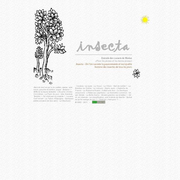 Logo Insecta