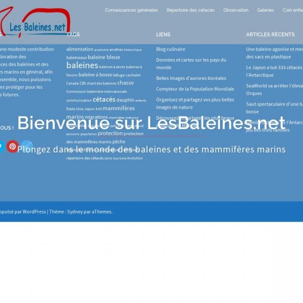 Logo Les baleines du Saint-Laurent