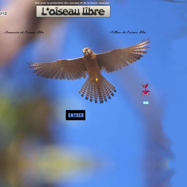 Logo L'oiseau libre