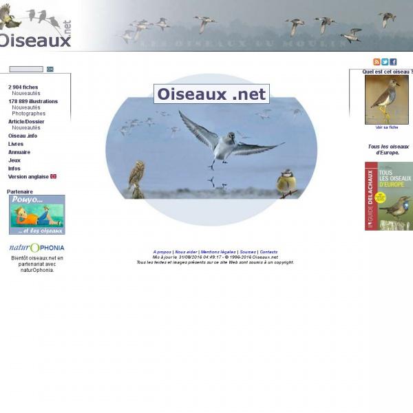 Logo Annuaire des oiseaux